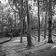 Swarthmore College Scott Amphitheater Art Print