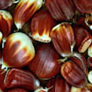 Sweet Chestnuts Art Print