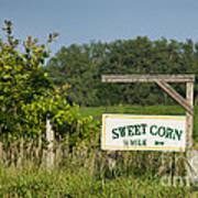 Sweet Corn Art Print