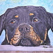Rottweiler's Sweet Face Art Print