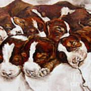Sweet Sleep Art Print