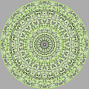 Sweet Spring Mandala Art Print
