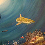 Swimming With Sharks Art Print