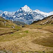 Swiss Alps - Schreckhorn And Valley Art Print