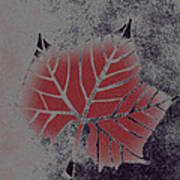 Sycamore Leaf Art Print