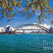 Sydney Harbour Skyline 2 Art Print