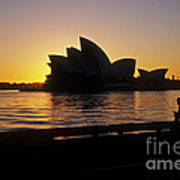 Sydney Morning Art Print
