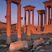Syria, The Great Tetra Pylon At Palmyra Art Print
