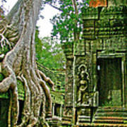 Ta Prohm And Tree Invasion In Angkor Wat Archeologial Park Near Siem Reap-cambodia Art Print