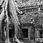 Ta Prohm Roots And Stone 01 Art Print