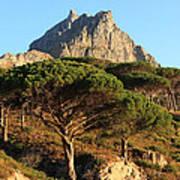 Table Mountain View Art Print