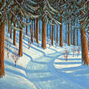 Tahoe Forest In Winter Art Print