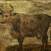 Take The Cow By The Horns Art Print