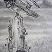 Taking Flight Art Print