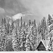 Taking Refuge - Grand Teton Print by Sandra Bronstein