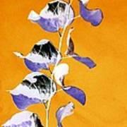 Tangerine Sky Art Print