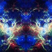 Tarantula Reflection 1 Art Print