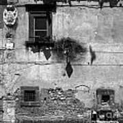 Tarquinia Muro Con Stemma Art Print