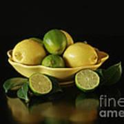 Tart And Tasty With Lemon And Lime Art Print