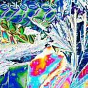 Tartaric Acid Crystals In Polarized Light Art Print