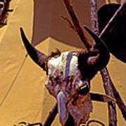 Tatanka Skull Art Print