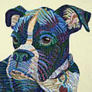 Tater - Portrait Of A Boxer Print by Erika Pochybova
