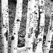 Tattoo Trees Art Print