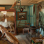 Taxidermy At The Holzwarth Historic Site Art Print