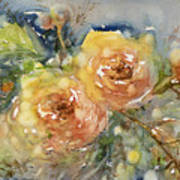 Tea Roses Art Print