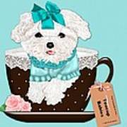 Teacup Baby Maltese Art Print by Margaret Newcomb