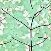 Teal Greens Leaves Melody Art Print
