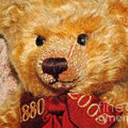 Teddy's Anniversary Art Print