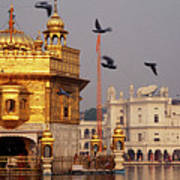 Temple At The Waterfront, Golden Art Print