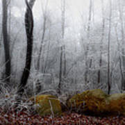Tennessee Mountain Frost Art Print