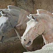 Terracotta Warrior Horses, China Art Print