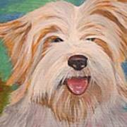 Terrier Portrait Art Print