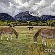 Teton Pastorale Art Print