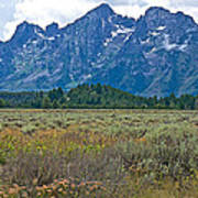 Teton Peaks And Flatland Near Jenny Lake In Grand Teton National Park-wyoming Art Print