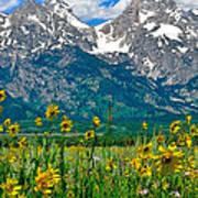Tetons Peaks And Flowers Center Panel Art Print