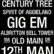 Texas A And M College Town Wall Art Art Print
