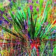 Texas Agave Pee Wee Plant Art Print