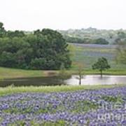 Texas Bluebonnets And Lake Art Print by Ellen Howell