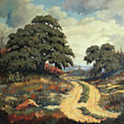 Texas Hill Country Art Print by Bob Hallmark