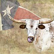Texas Longhorn # 2 Art Print