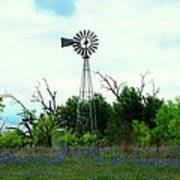 Texas Windmill And Bluebonnets Art Print