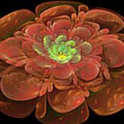 Textured Bloom Art Print by Sandy Keeton