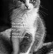 Thanksgiving Kitty Bw Art Print