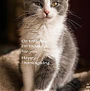 Thanksgiving Kitty Art Print