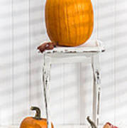 Thanksgiving Pumpkin Display Art Print