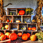 Thanksgiving Pumpkin Display No. 1 Art Print